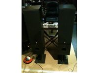 Dynalab SDA 2.8 Signature reference speakers. Refurbished and upgraded. + Stands