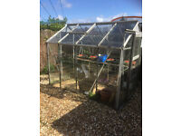 Good, medium sized greenhouse, glass/aluminium frame- FREE - the buyer must dismantle it and collect