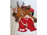 Adult Santa ride on reindeer fancy dress
