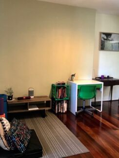 SHORT TERM - One bedroom apartment in Annandale