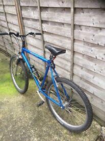 Large Frame bike
