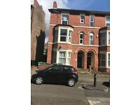 1 Bedroom Spacious Apartment in Excellent Location