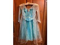 Disney Elsa fancy dress