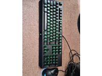 Razer blackwidow keyboard and Razer Vipor mini mouse
