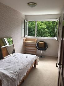 Large single bedroom room rent in St Albans near watford luton Hatfield Hertfordshire