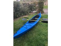 Perception Vista Double Kayak with rudder and 2 paddles