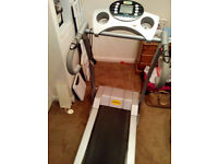 PowerTrek Treadmill