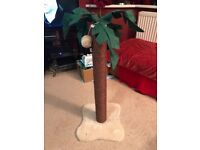 Coco Palm Cat Scratching Post New