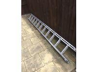 Double twelve ladder