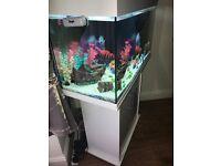 125l jewel fish tank/aquarium