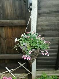 Handmade hanging baskets