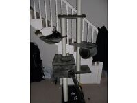 Cat Scratching Post - floor to ceiling height - multi levels - VG condition - self assembly - OFFERS