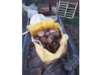 Ash tree firewood