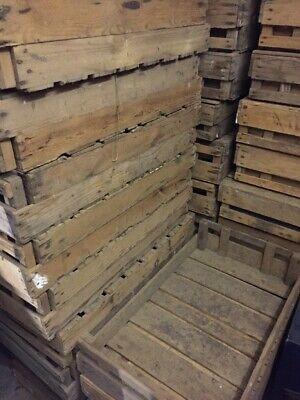 Bulk buy! 150 for £200 POTATO CHITTING BUSHEL BOX