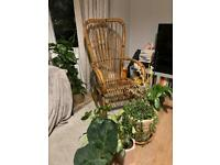 Authentic Rattan (Wicker) Rocking Chair