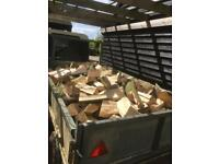 Un seasoned logs