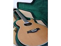 Richwood acoustic guitar