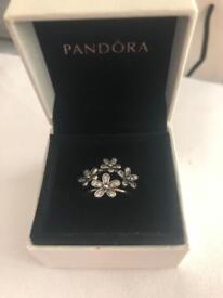 Two flower pandora rings