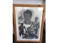 Muhammad Ali Picture