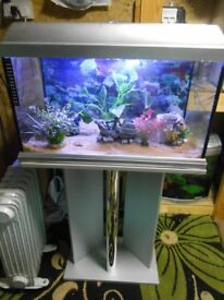 Aquarium with matching stand and led lighting with filter
