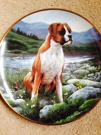 Collectible Display Plates by Danbury Mint £10