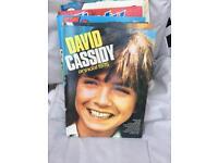 David Cassidy 1975 annual