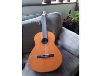 Raimundo Guitar