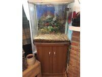 Fish tank 130L