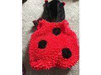 Ladybird costume age 18-24months