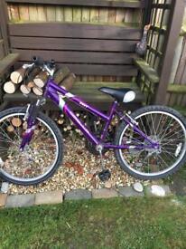 Girls Apollo envy bike