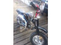 110cc monkey bike