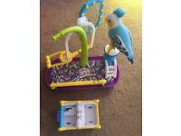 Clever Keet Interactive Bird (Blue)