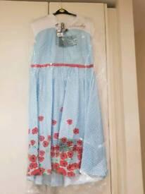 Dorothy fancy dress