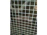 2 ferrets for sale female and male