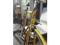 Classic Road Race Bike - Giant Peloton 7000- Steel - Gold 59cm frame