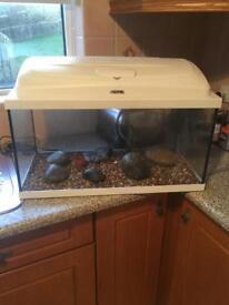Fish tank Like New.