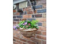Hanging basket with summer plants