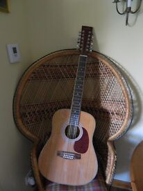 Infinity 12 string Acoustic/ Electric Guitar and Amplifier