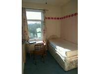 1 Sunny Bedroom available near Norfolk Park