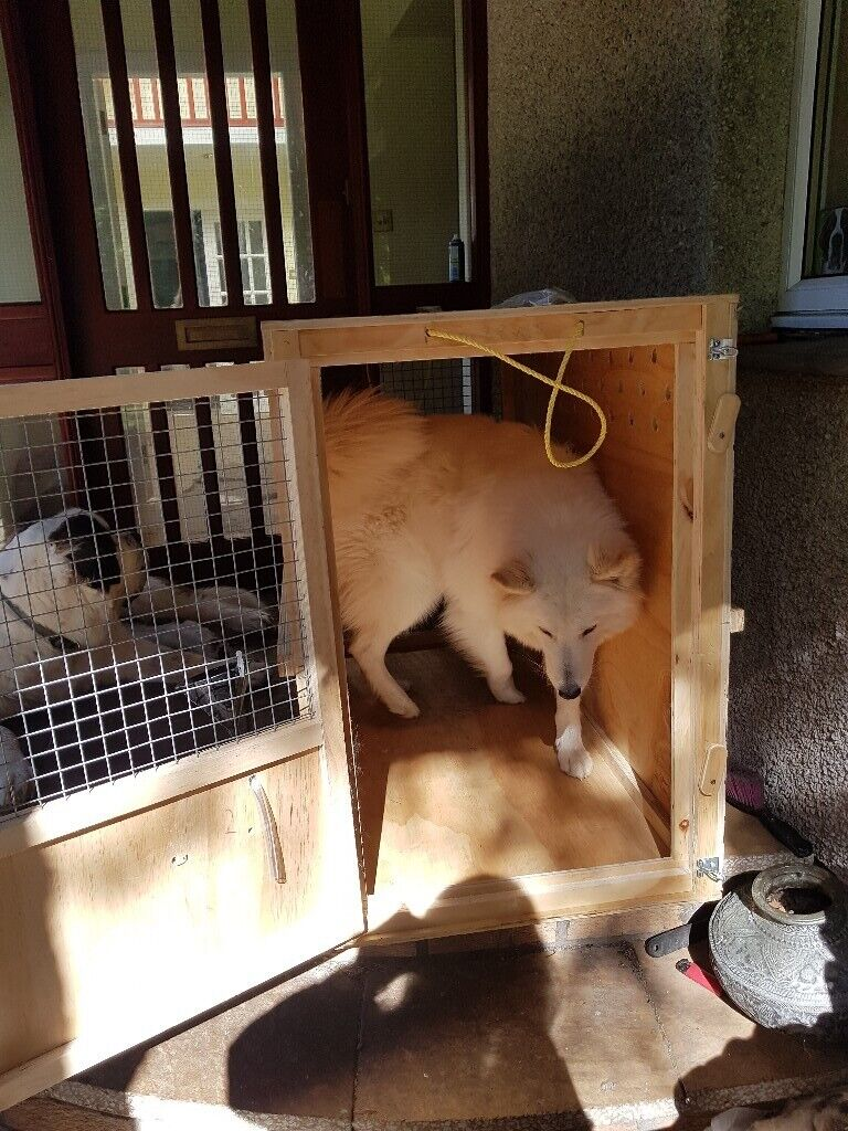 Iata Approved Wooden Dog Crate Xl In Granton Edinburgh Gumtree