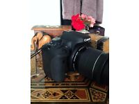 Canon 750D, brand new condition, great camera for £500