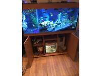 4 foot fish tank juwel Rio 300 litre