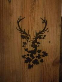 Picture - Stag