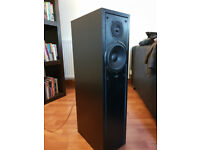 Eltax floor standing speakers (pair)