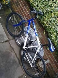 Adult men's Apollo mountain bike