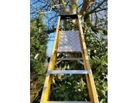 10 tread group platform ladder