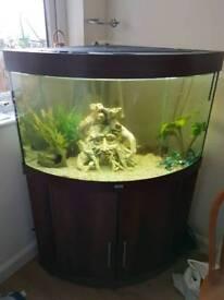 Jewel 190l corner tank and stand
