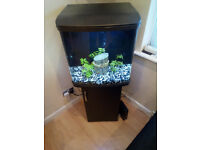 Tropical Fish Tank 94L FULL LIVE SETUP!