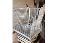 Parrot / bird travel cage