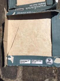 9 Biscuit Ceramic Floor time 330mm x 330mm